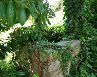 Ancien puits seigneurial