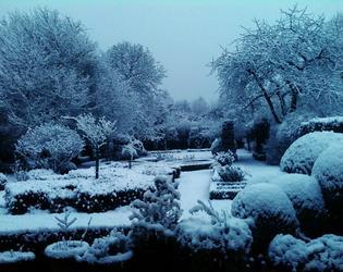 cote jardin sous la neige