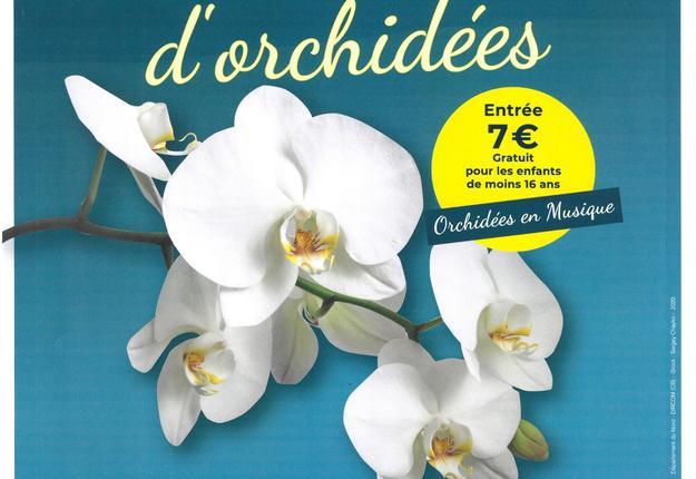 30 exposition d'orchidées