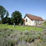 Vue de l'Abbaye du jardin