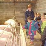la visite de l'élevage