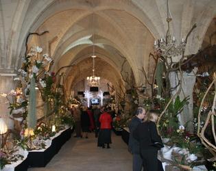 orchidées 2007