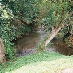 Confluent Ecaillon-Saint-Georges