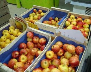 pomme magasin vergers de vaucelles.jpg