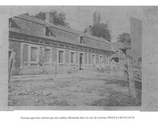 Travaux agricoles effectués par les allemands à la ferme Drain