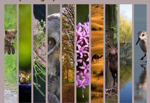 expo photos grandeur nature