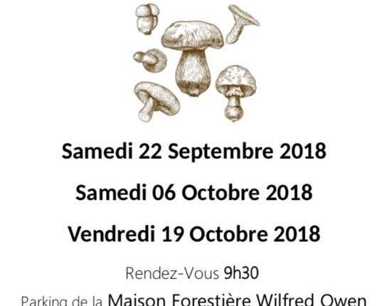 Journées mycologiques ors 2018