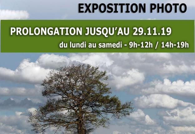 prolongation-expo nature